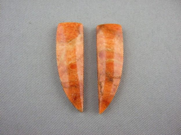 Fossilized Apple Coral Cabochon Pair